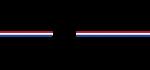 Resized Ams Logo
